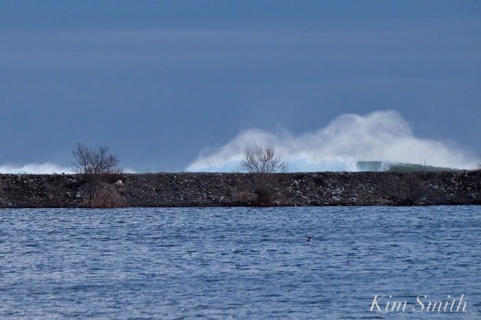 niles-pond-brace-cove-after-noreaster-copyright-kim-smith