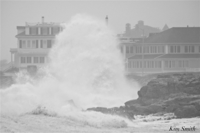 noreaster-backshore-waves-6-gloucester-1-24-17-copyright-kim-smith