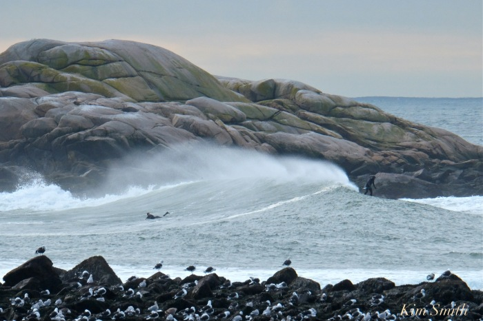 surfers-brace-cove-back-shore-gloucester-waves-2-copyright-kim-smith