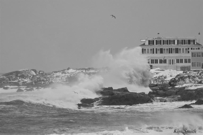 bass-rocks-ocean-inn-2-gloucester-february-2017-snowstorm-copyright-kim-smith-jpg