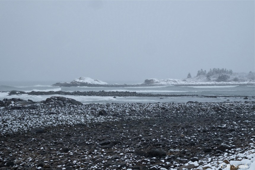 brace-cove-snowy-day-gloucester-copyright-kim-smith