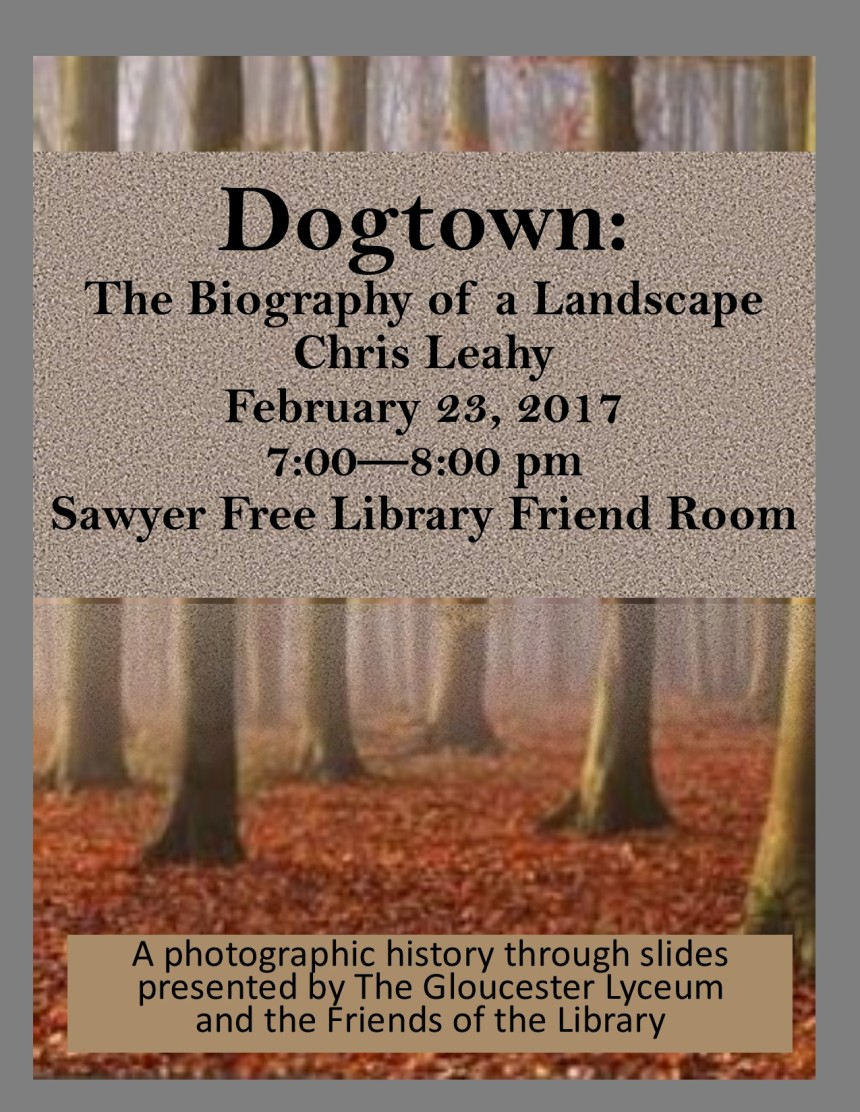 dogtown-program-2-23-2017