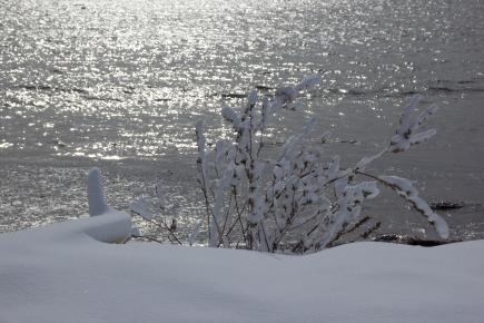february-17-2017-sparkling-ocean-against-snow
