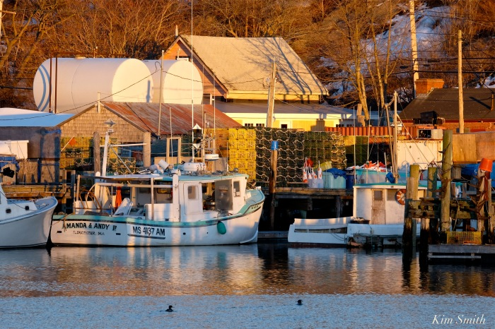 fv-amanda-and-andy-smiths-cove-gloucester-copyright-kim-smith