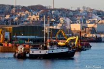 fv-captain-novello-gloucester-harbor-copyright-kim-smith