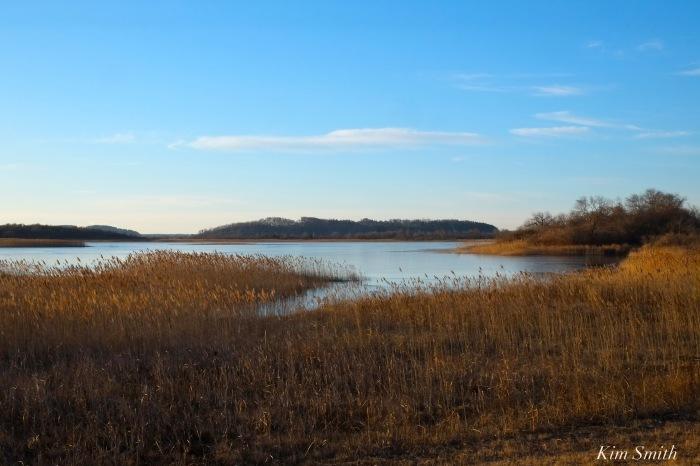 parker-river-wildlife-refuge-impoundment-copyright-kim-smith