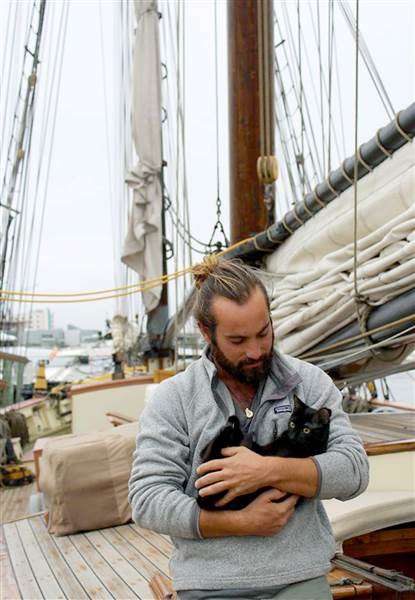 tall-ship-lynx-stray-cat-today-170223-01_229e7099a4a6039f1f9be4318f7d2da5-today-inline-large