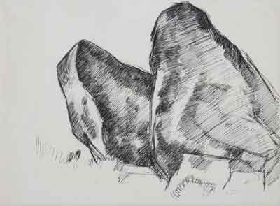 hartley-whales-jaw-drawing