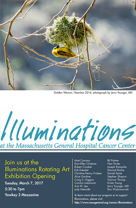 Illuminations_Poster-01_17.jpg