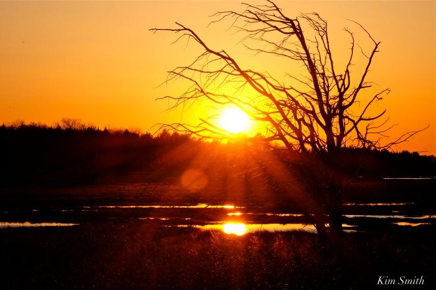 marsh-gloucester-sunset-copyright-kim-smith