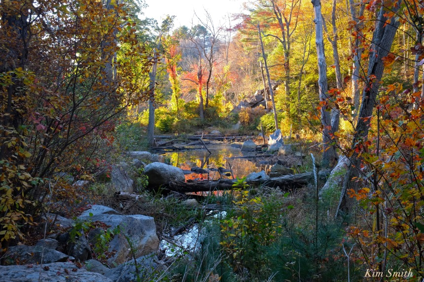 pond-gloucester-massachusetts-copyright-kim-smith