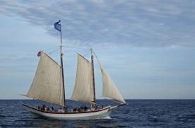 170622 Sail Boston fleet leaving Cape Ann for Halifax (17a)