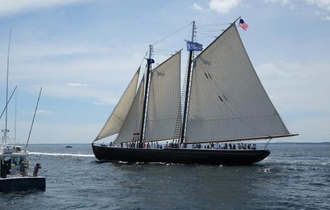 170622 Sail Boston fleet leaving Cape Ann for Halifax (1a)