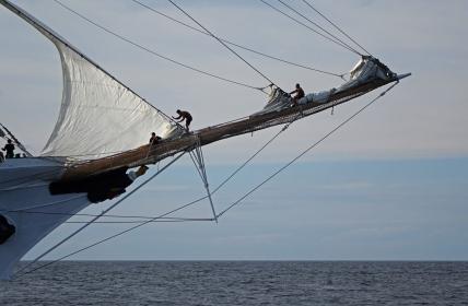 170622 Sail Boston fleet leaving Cape Ann for Halifax (6a)