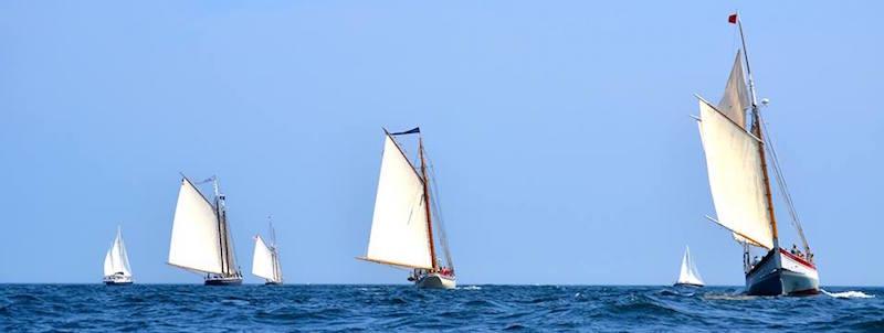 ardelle-schooner-race-copy-w1440h900