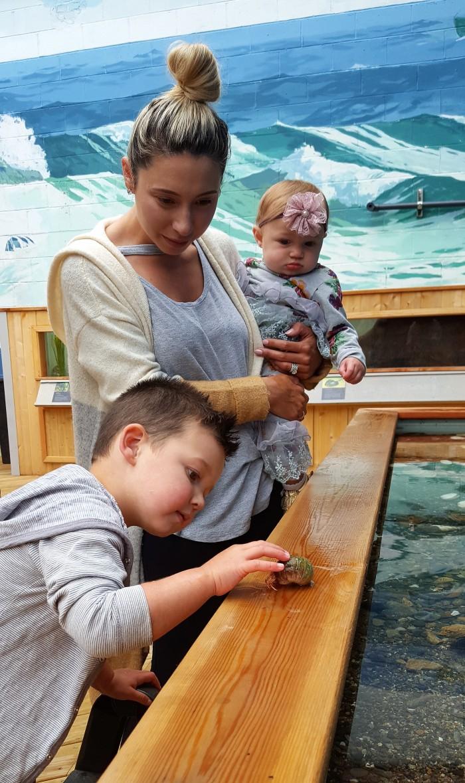 family in Sea Pocket Aquarium