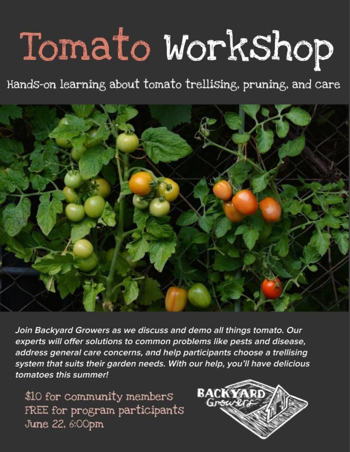Tomato Workshop