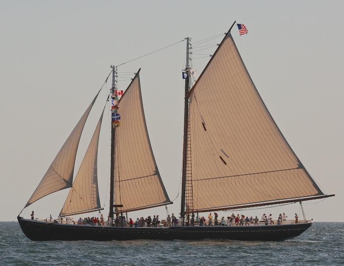 Adventure Under Sail 6246 (2)
