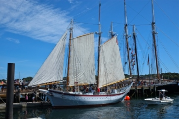 Gloucester Maritime Heritage Day copyright Kim Smith