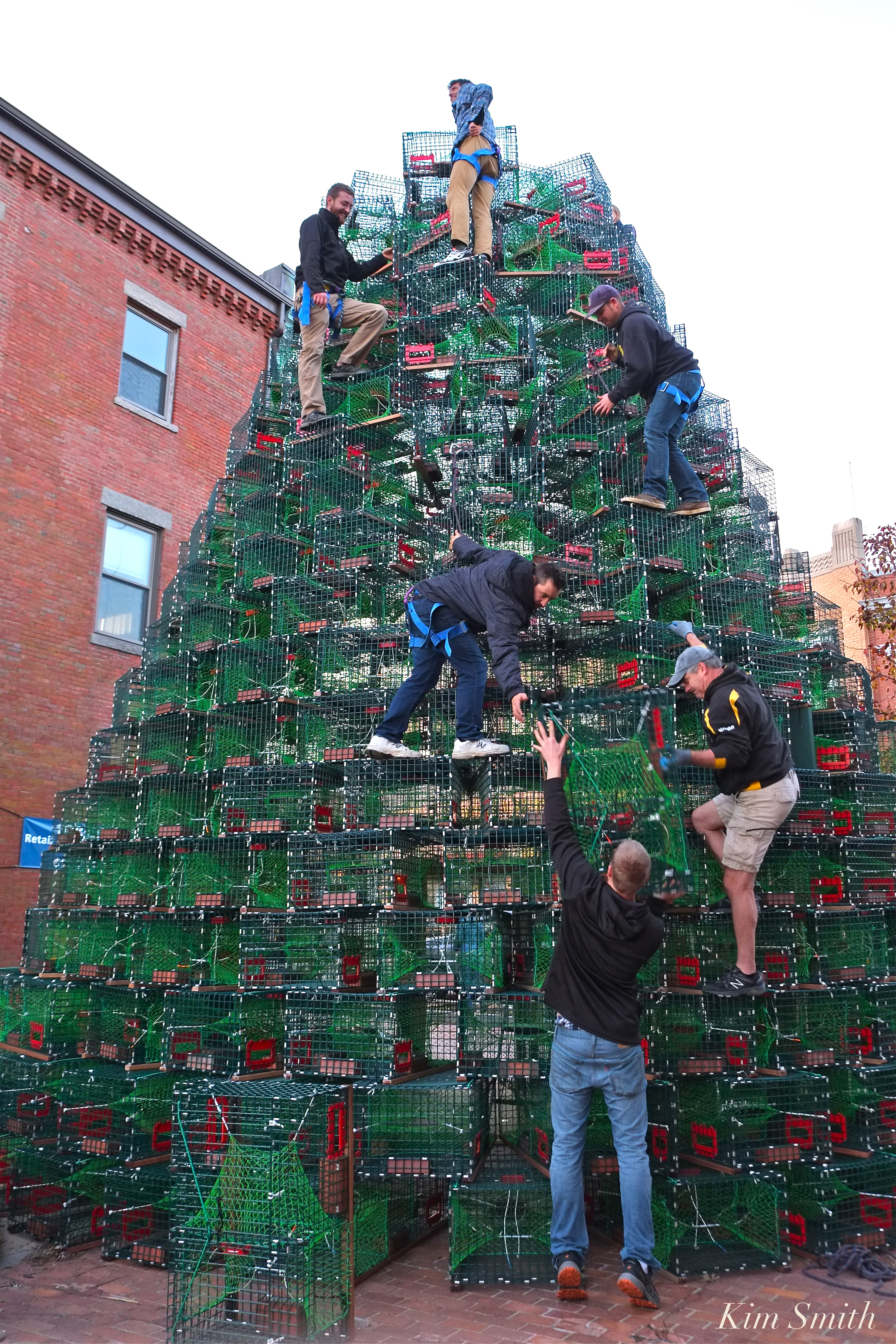 BUILDING THE LOBSTER TRAP CHRISTMAS TREE #GLOUCESTERMA | GoodMorningGloucester
