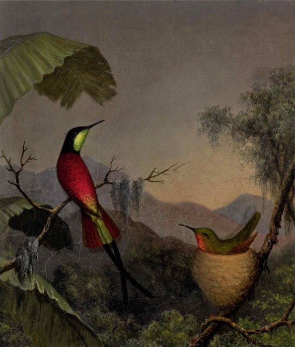 Martin Johnson Heade Crimson Topaz Hummingbirds Nesting near a Palm tree o c 13 x 11 ca1865 est 150 to 200 thousand Sothebys