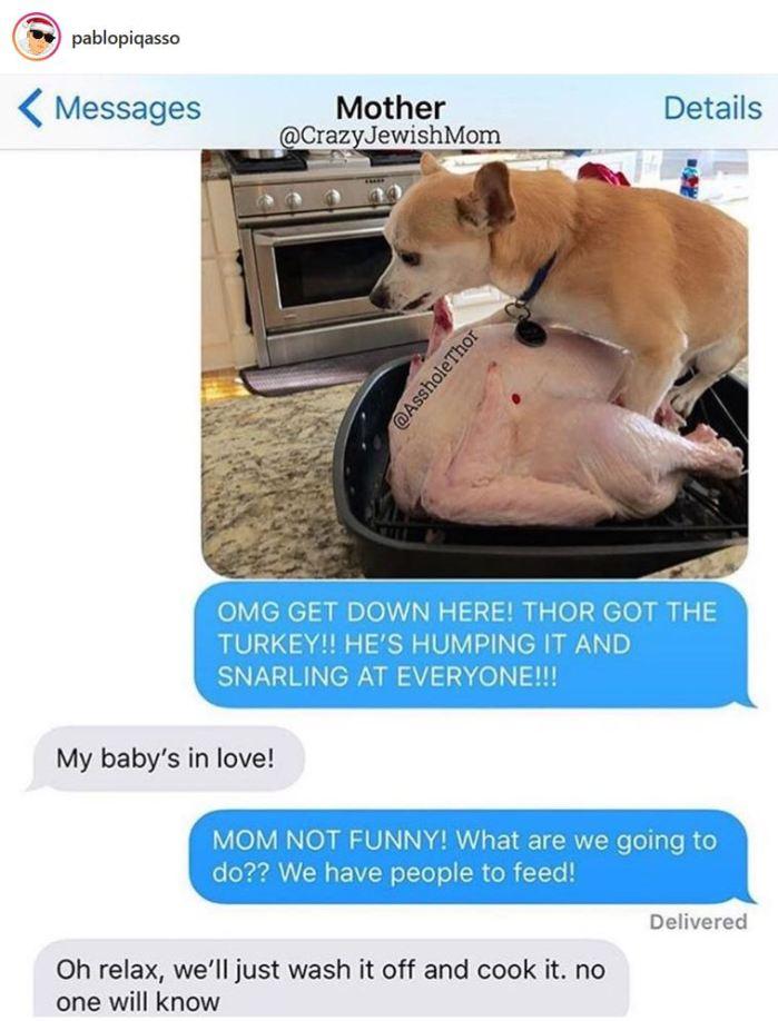 doghumpingturkey