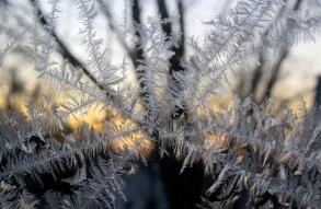 IceCrystals12-28-17_9499
