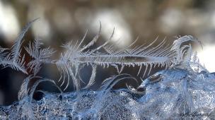 IceCrystals1-5-18_0165