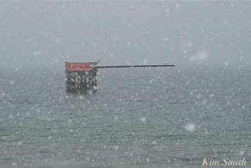 Greasy Pole Gloucester MA Snowy Day copyright Kim Smith