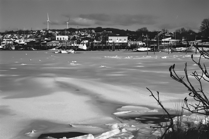 smith cove frozen