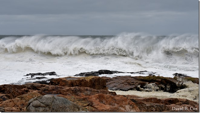 2018 3 5 Storm surf Photos Monday 002