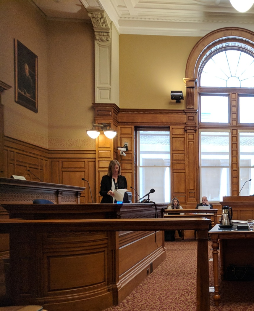 AMY STEWART FANTASTIC Boston MA John Adams Courthouse -Berkshire Museum deaccession case oral arguments before SJO Justice Judge Lowy_Mar 20 2018 _102144 © catherine ryan (17).jpg