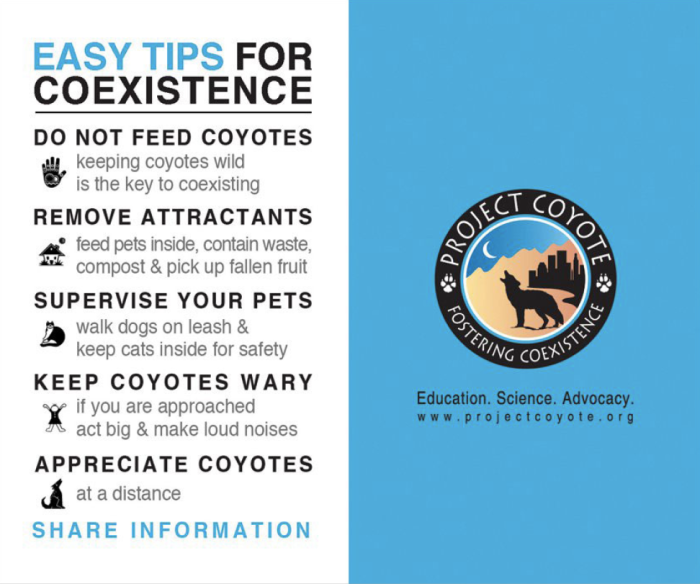 Coyote tips card