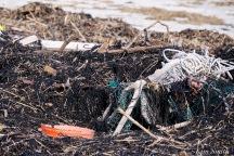 Sandy Point Beach Plum Island Massachusetts after storm barrier beach damage -4 copyright Kim Smith