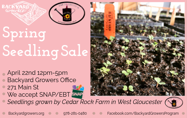 Backyard Growers Spring Seedling Sale 4 22 Good Morning Gloucester