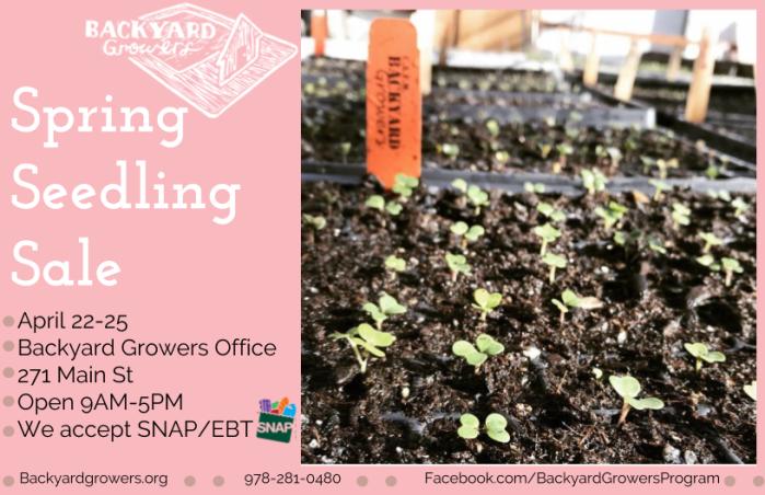 Spring Seedling Sale Info (1).png