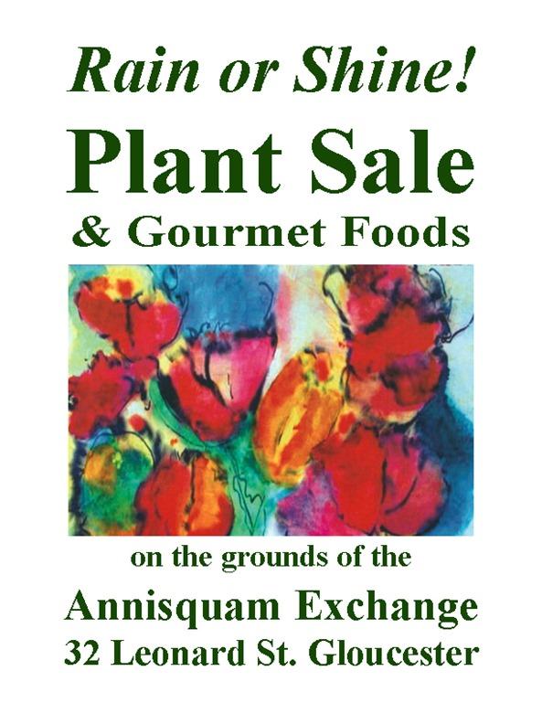 ASC-PlantSale-RainShine