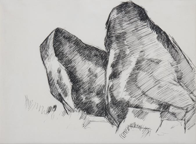 Hartley-WhalesJaw collection CAPE ANN MUSEUM Gloucester Mass