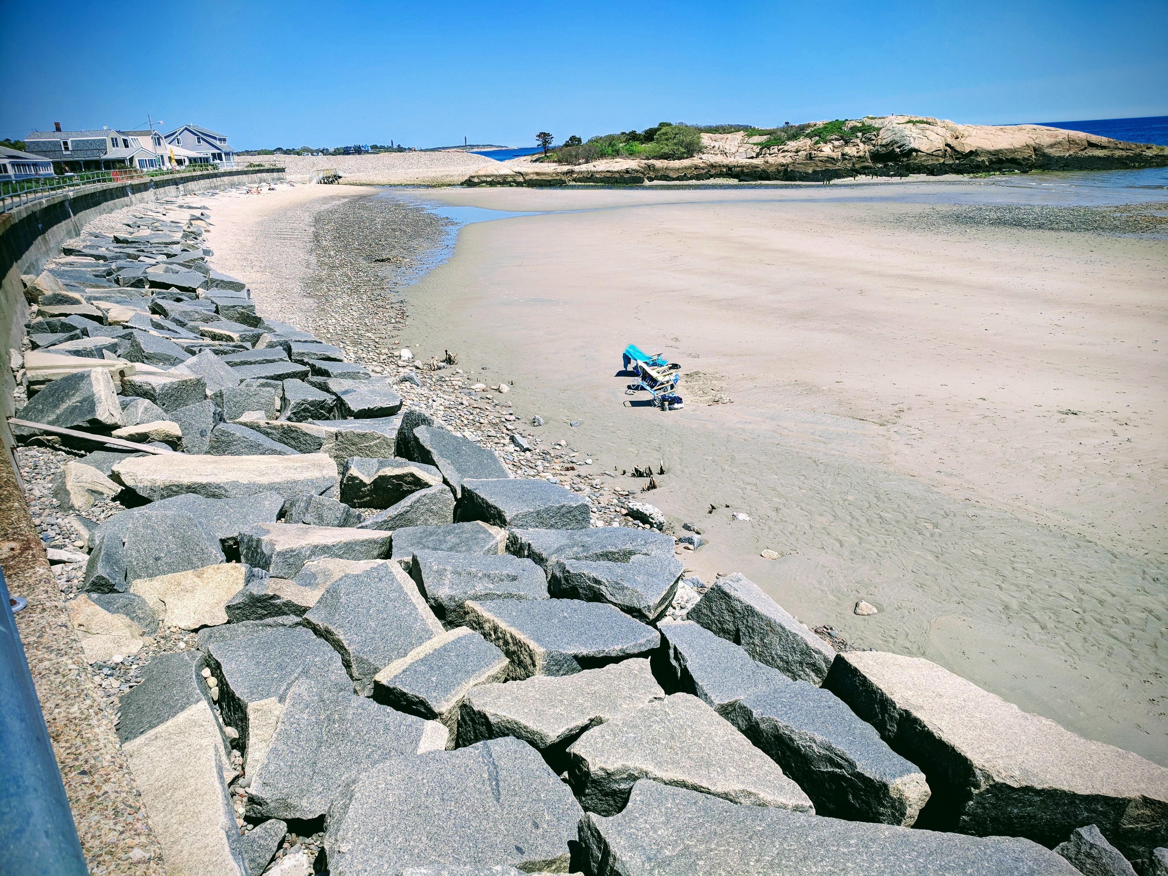Long Beach Massachustts after winter 2018 storm damage- mangrove like roots surface©c ryan_20180523_134700
