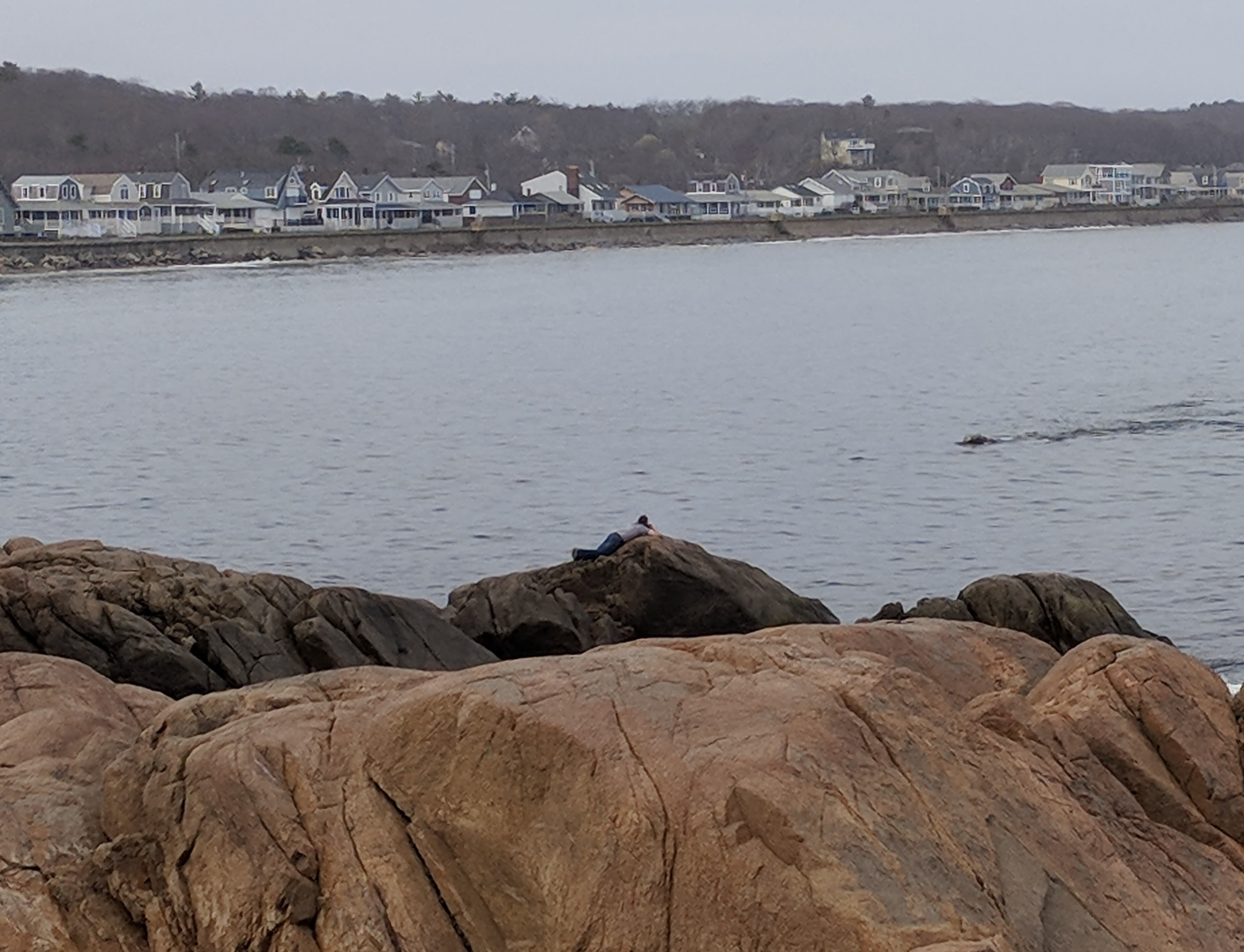right whale watching from shores gloucester ma 20180504