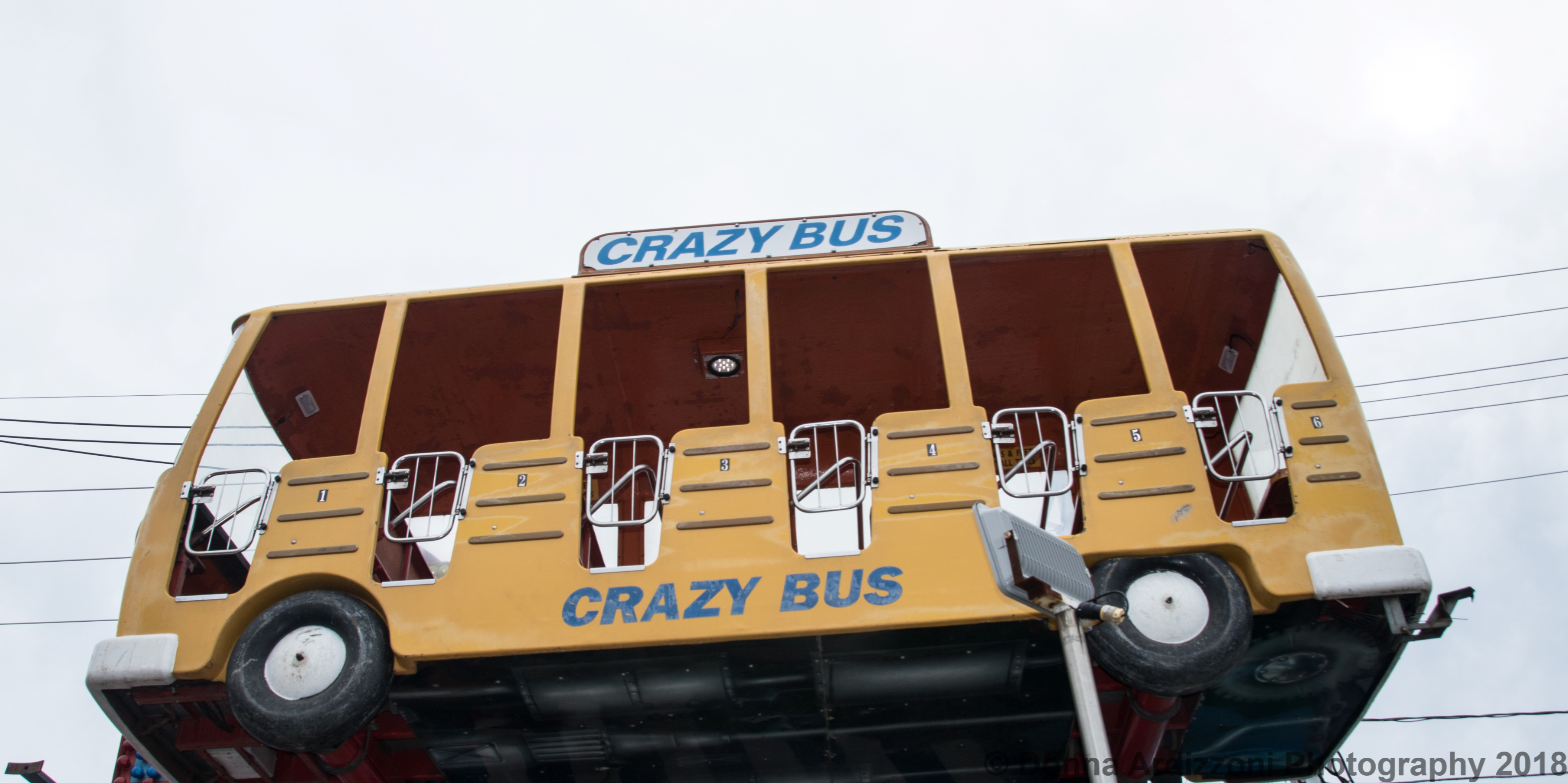 June 27 2018 The Crazy Bus Good Morning Gloucester