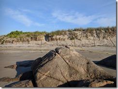 Special rock piping plover enclosure Good Harbor Beach Gloucester Mass_©c ryan_20180617_063939