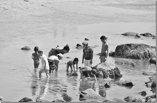 2018 8 10 GH Beach & Walks 002