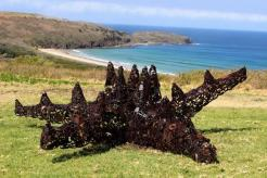 Deborah Redwood - Starfish at Killalea