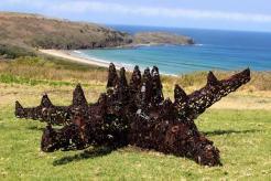 Deborah Redwood - Starfish at Killalea