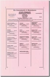 St Primary Sept 4%2C 2018 Democrat Specimen Ballot