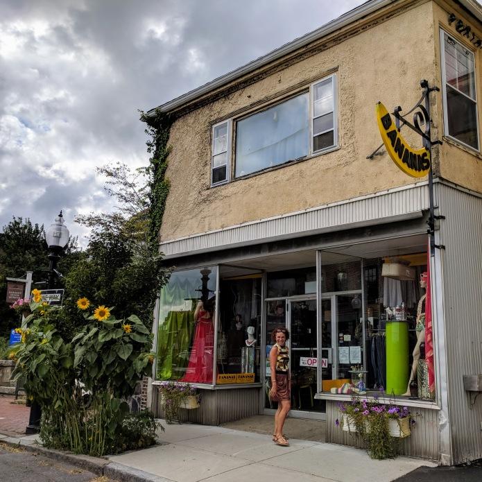 Sunflowers at every turn _ Bananas new window display _ Main Street _ downtown Gloucester Mass©c ryan 2018 Aug 30 (6)