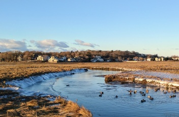 seasons at the back of Good Harbor Beach_Great marsh views_Gloucester Mass_ _2017 March 4_©catherine Ryan