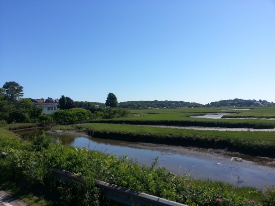 Seasons summer view across marsh back of Good Harbor Beach_Gloucester Mass_2016 July 4_©catherine Ryan