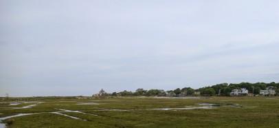 Seasons sweep of spring_marsh back of Good Harbor Beach_Gloucester Ma_2017 May 280528©catherine ryan